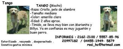 20070626191630-tango.jpg