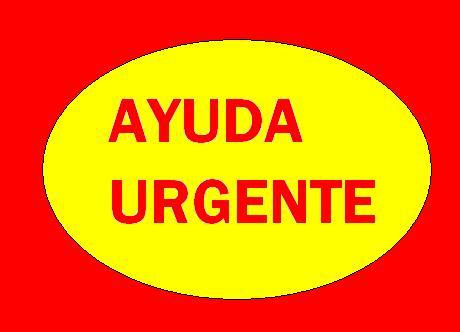 """AYUDA URGENTE PARA """"Ángel"""""""