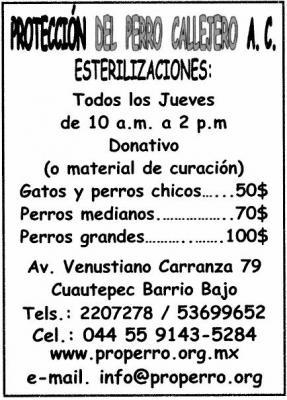 Esterilizaciones a bajo costo en Cuautepec